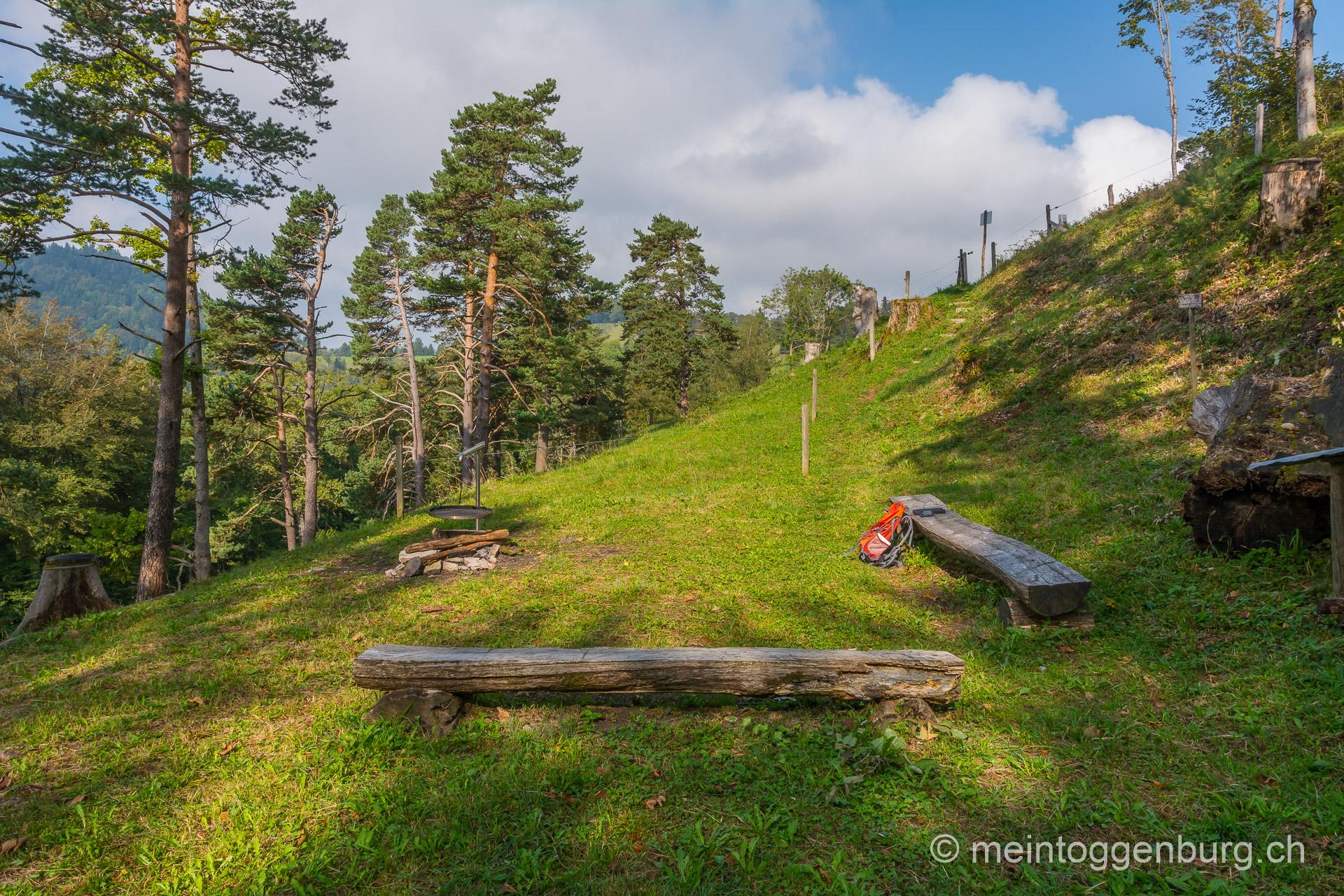 Grillplatz Alp Ergeten 1 Mosnang
