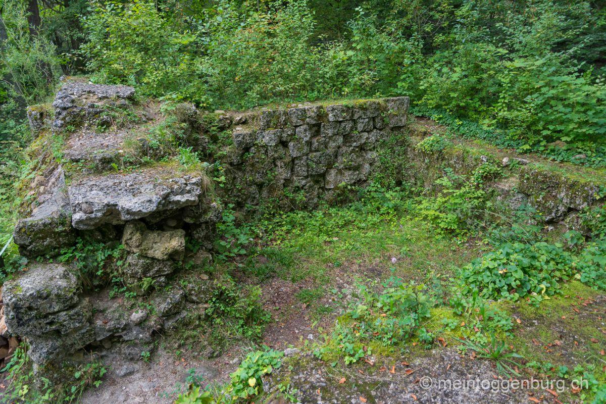 Grillplatz Feuerstelle Toggenburg Ruine Rüdberg Oberhelfenschwil