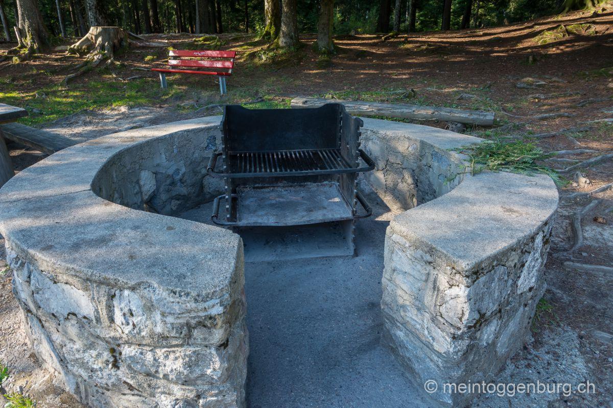Grillplatz Feuerstelle Toggenburg Scherb Ebnat-Kappel