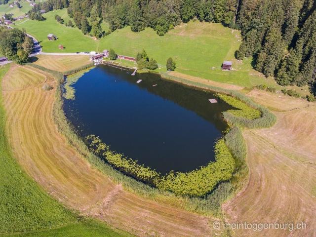 Luftaufnahme Wildhaus Badi Schönenbodensee