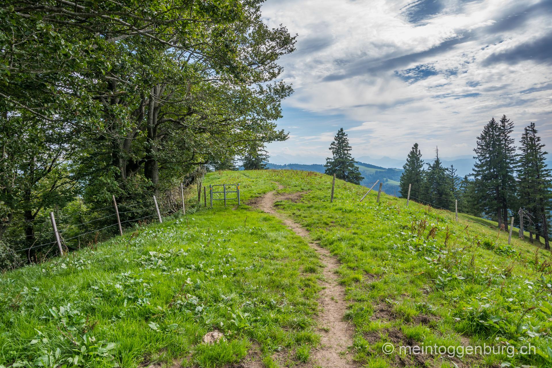 Wanderung Libingen - Meiersalp - Schnebelhorn