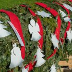 Weltrekord Adventskranz Mosnang