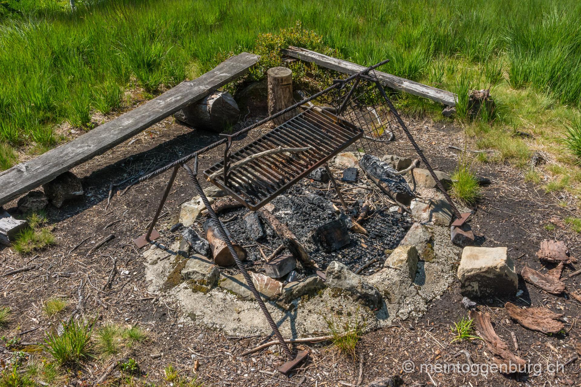 Feuerstellen auf der Wolzenalp